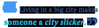 define city slicker
