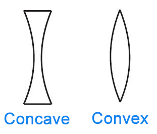 Image result for concave vs convex anatomy