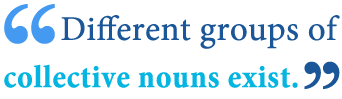 is family a collective nouns animals