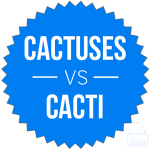 cactuses versus cacti