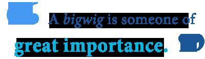 define bigwig