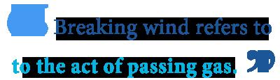 define breaking wind