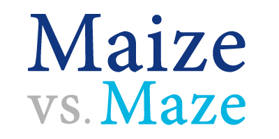 maze versus maize