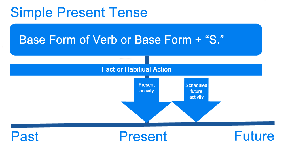 Past and present tense verbs