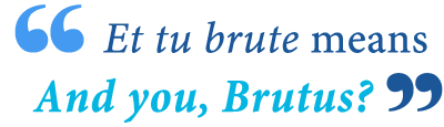 what does et tu brute mean in English